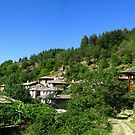 In the Rhodope mountains by Maria1606