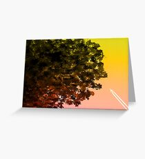 Contrast. Greeting Card