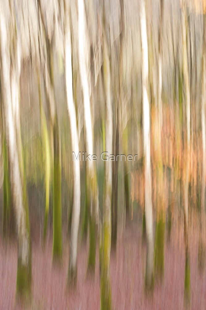 Abstract Trees by Mike Garner