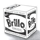 Brillo Soap Pads by axemangraphics