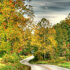 The Long and Winding Road by Chelei