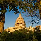 The United States Capital Dome. by Mark Ramstead