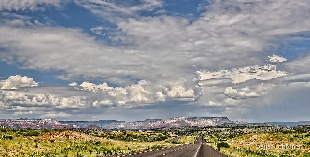 On The Road Again  by Saija  Lehtonen