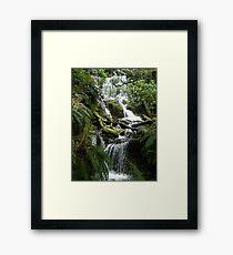 waterfall and greenery Framed Print