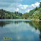 Tottiford Reservoir (2) by lezvee