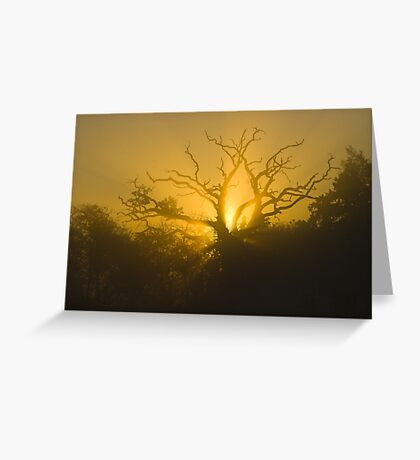 Breakthrough Greeting Card