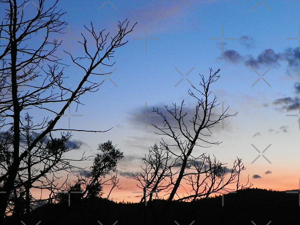 Sunset Relief by Betty  Town Duncan