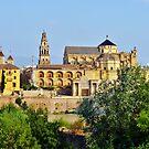 Mesquita, Cordoba, Spain by artfulvistas