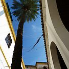 40 degrees in Cordoba! by artfulvistas