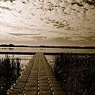 Hasse Lake B&W, Alberta Canada by Jessica Chirino Karran