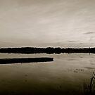 Hasse Lake B&W #2, Alberta Canada by Jessica Chirino Karran