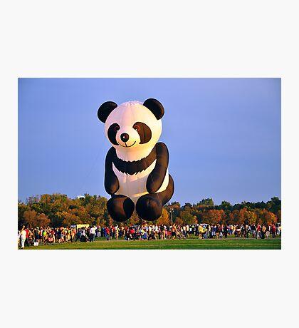 The Flying Panda Photographic Print