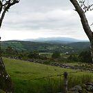 Towards Ballymacarbry,Knockmealdown Mountains,in Background. by Pat Duggan
