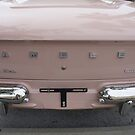 Old Pink Rambler by Laurie Perry