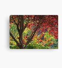 autumn window in Japanese Garden Canvas Print