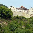 Liechtenstein Castle by leystan