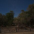 Moonlit Night Musgrave Station Roadhouse FNQ by Chris Cohen
