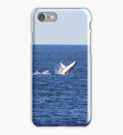 whales a hastings...iphone case  iPhone Case/Skin