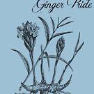 Ginger Pride (subtle) by stillbeing