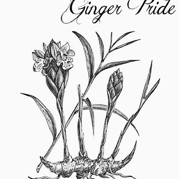 Ginger Pride (subtle) by stillbeing