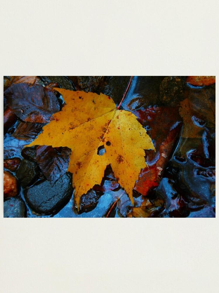 Alternate view of Carolina Blue Reflections Photographic Print