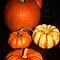 Ontario pumpkin contest!