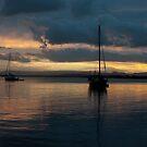 Stradbroke  Island by Matt Bishop