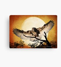 Eagle Owl And The Moon Canvas Print