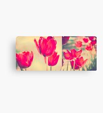 Red Tulips Diptych Canvas Print
