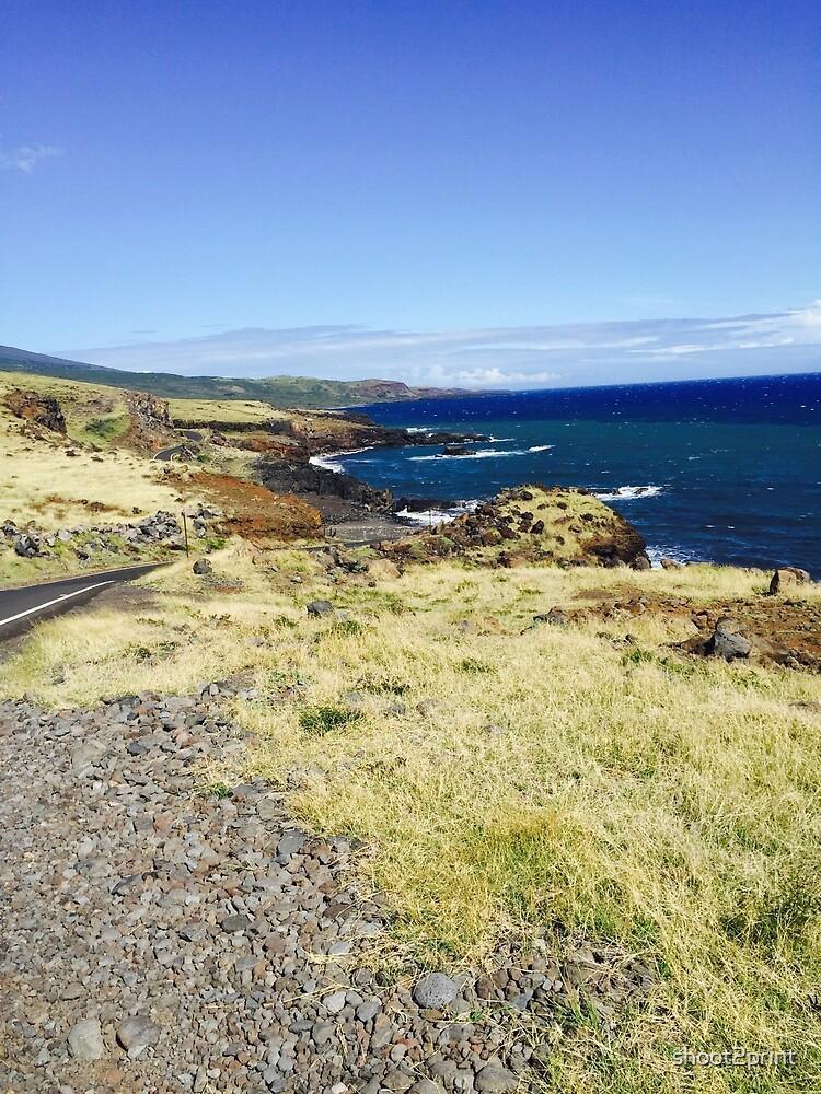 The Road to Hana by shoot2print