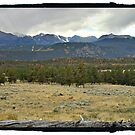 Rocky Mountain Park by Colleen Drew