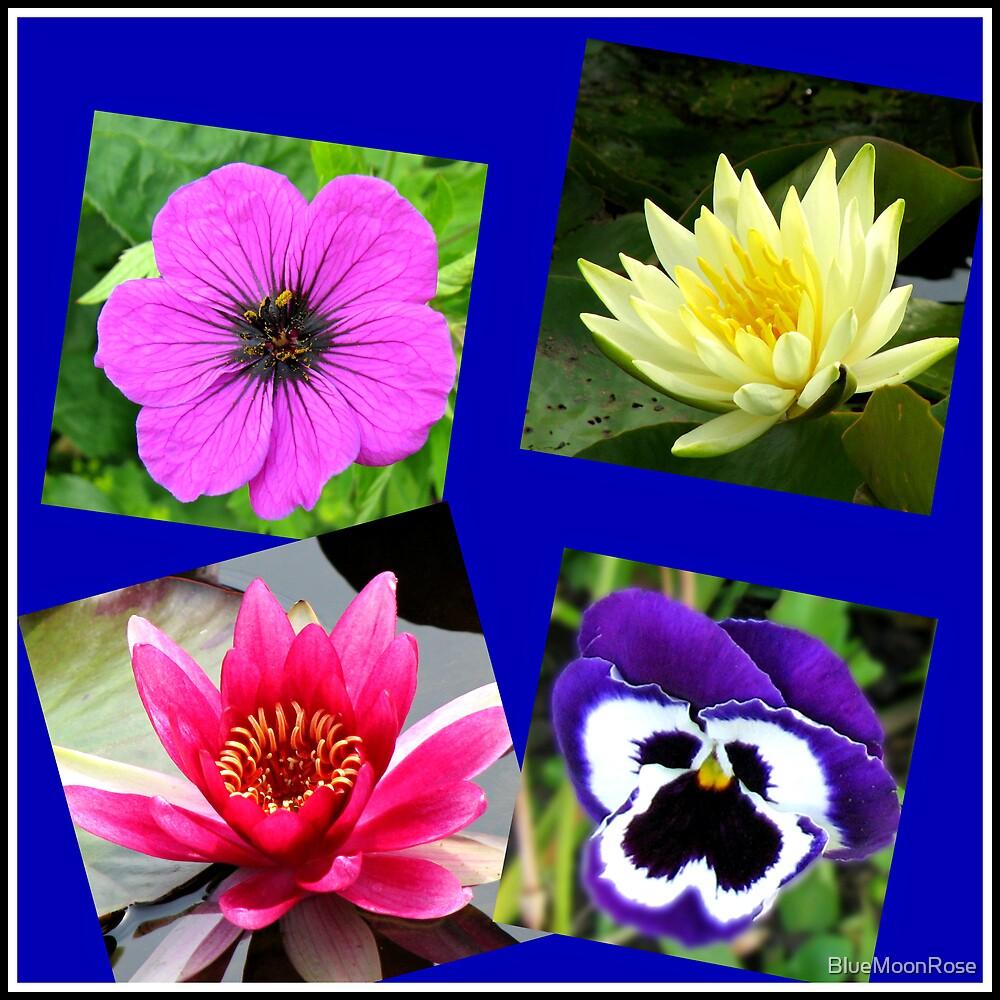 Essex Flowers Collage von BlueMoonRose