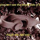 Polish The Dull Side by BobJohnson