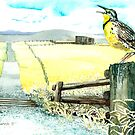 Meadowlark Greeting The Morning by clotheslineart