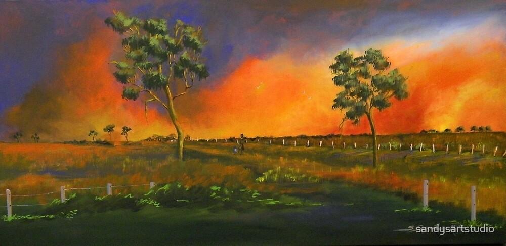 Western Sunset  by sandysartstudio