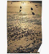 Revere Beach Poster