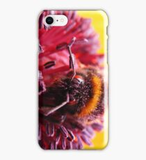 Pollen Thief iPhone Case/Skin