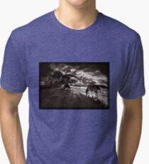 Horses 3 T shirt Tri-blend T-Shirt