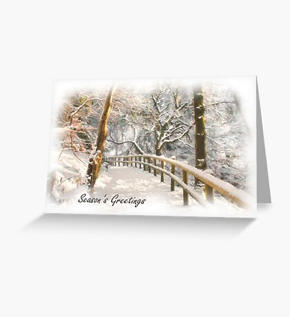 Winter sunlight Greeting Card