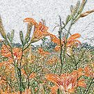 Colored Pencil Lilies by © CK Caldwell IPA