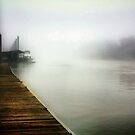 Foggy River by Barbara  Brown