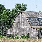 Part of an Old Barn by © CK Caldwell IPA