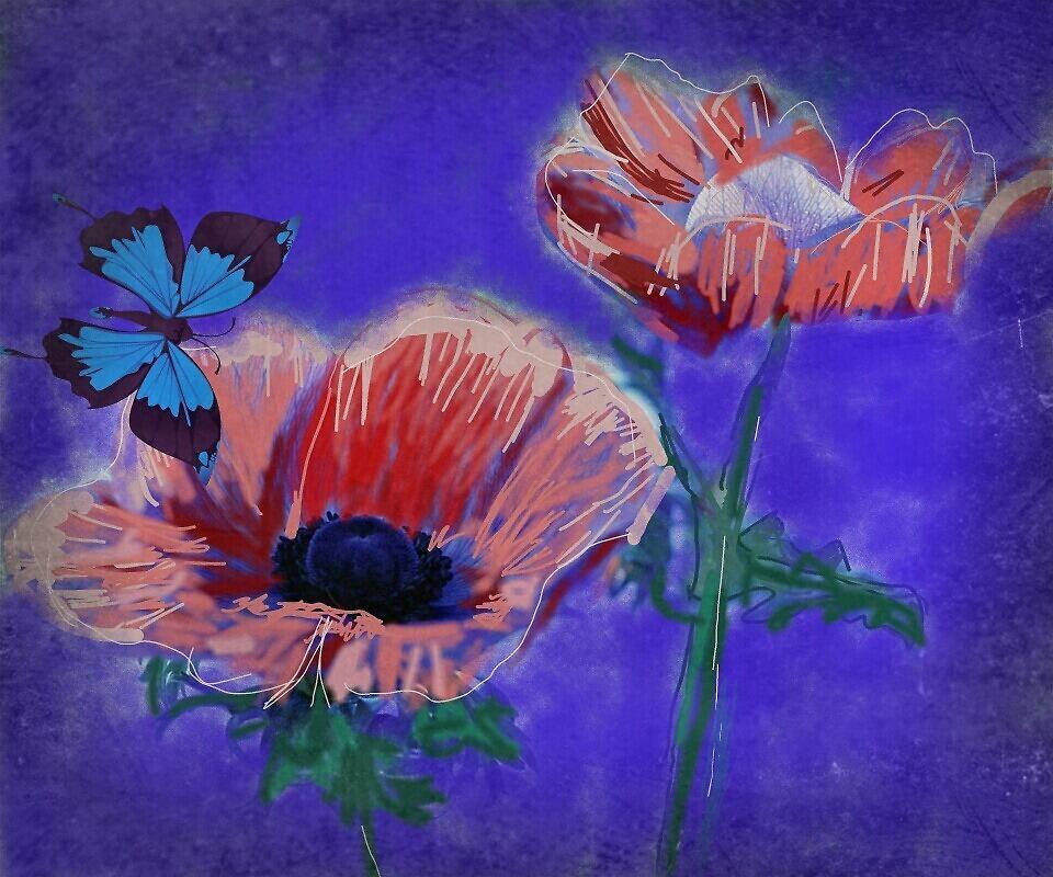 Untitled by Anna  Lewis, blind artist