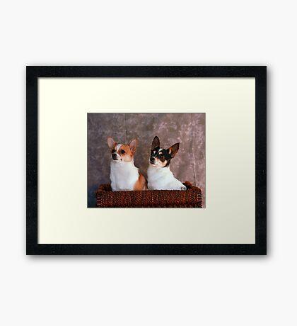 Stella and Eddie Framed Print