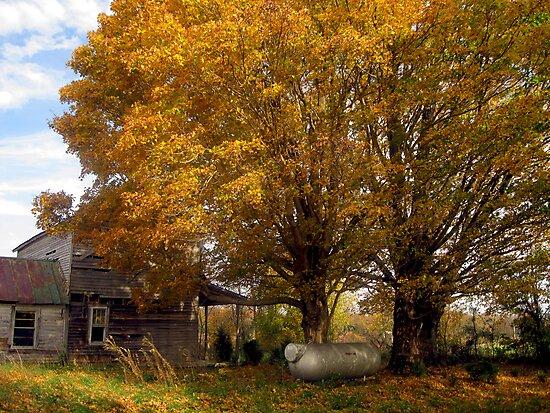 A Forsaken Farmhouse in Fall by Virginia Shutters