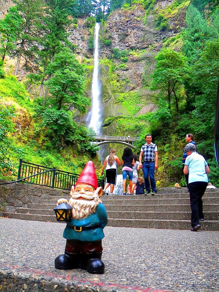 Tourist Falls by DustysGnomes