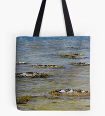 One of the earliest forms of life to evolve on earth Tote Bag