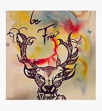 Deer be free, paint on canvas, Christine Hill Photographic Print