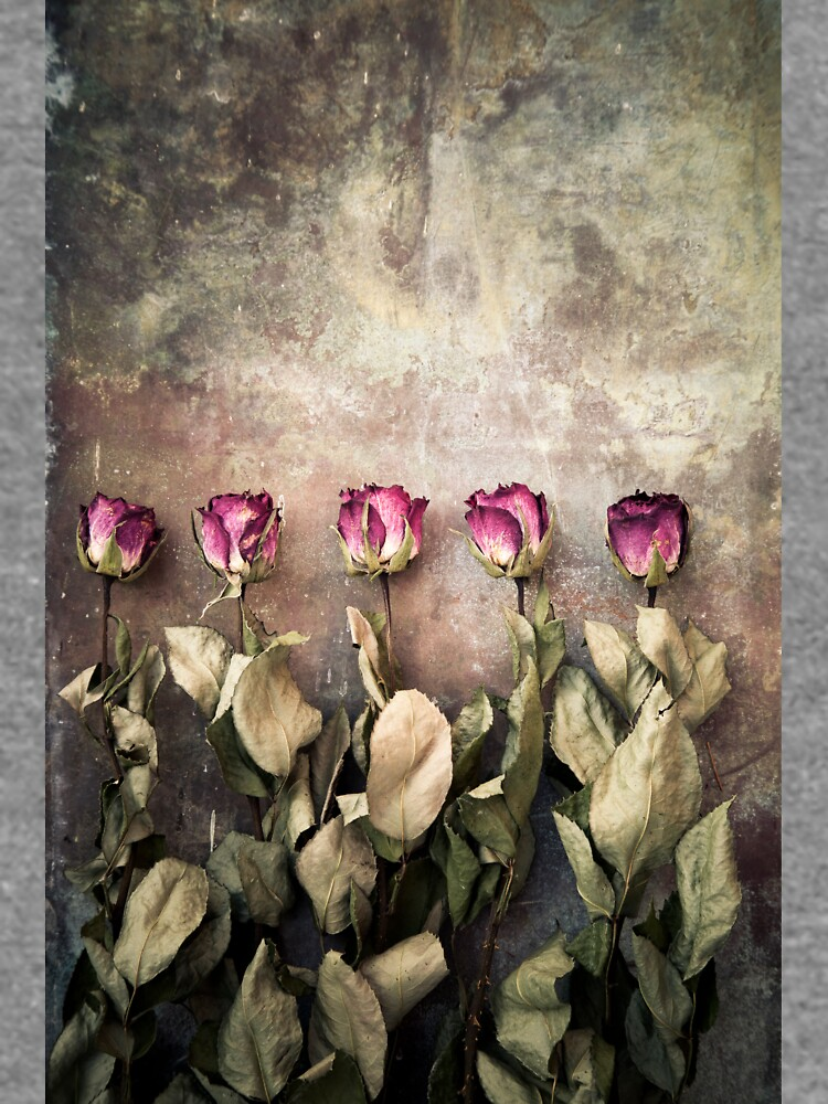 Five dried roses by mariaheyens