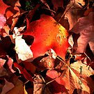 Leaves by © Joe  Beasley IPA